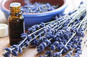 Lavender Essential Oil for Skin